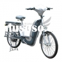 New 250W Electric Bicycle with Powerful Motor, Suitable for Cargo Loading(EB2503)
