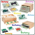 Montessori Equipment , Montessori Material in China