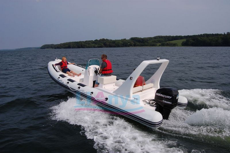 RIB BOAT rigid  inflatables,recreational boat, charter boat, leasure boat Lian Ya Boat 660