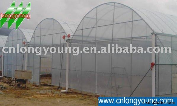 Agricultural greenhouse,Gothic Type