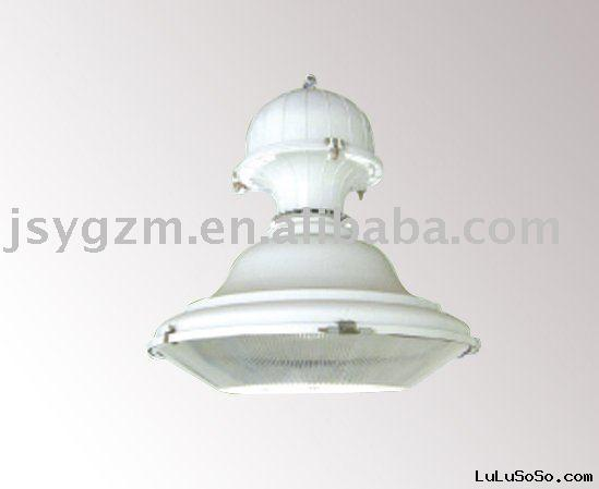 ENLAM factory  induction lamp