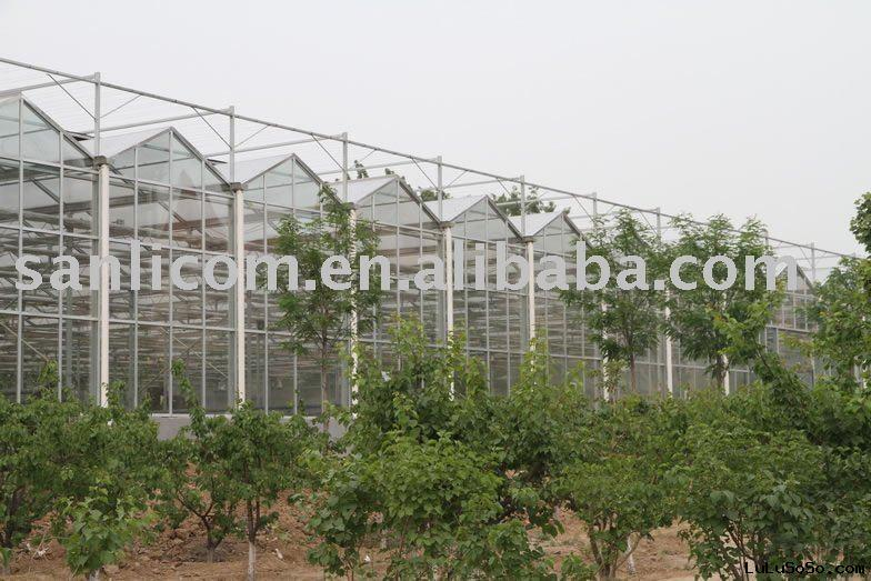 Glass Greenhouse/Agricultural Greenhouse