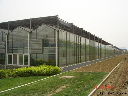 Greenhouse Covered with Glass
