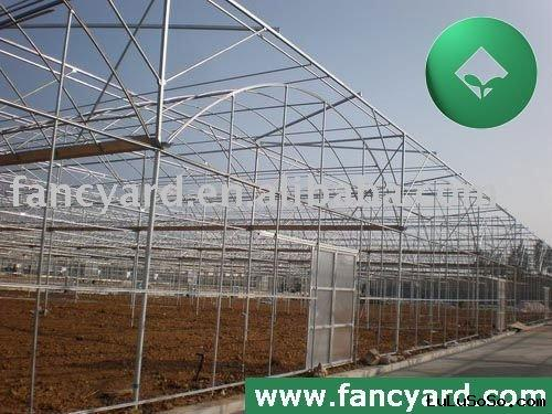 multi span agricultural greenhouse