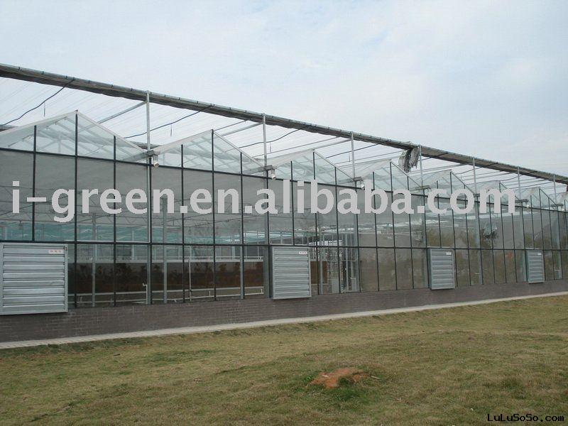 venlo shape glass greenhouse