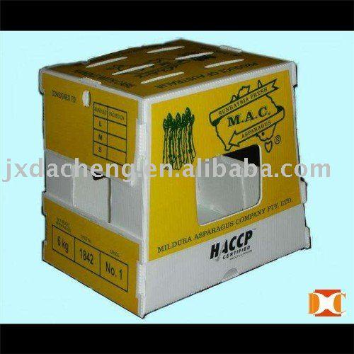 Fruit and Vegetable Storage/Transfer Plastic PP Box/Crate