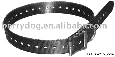 low price pet collar