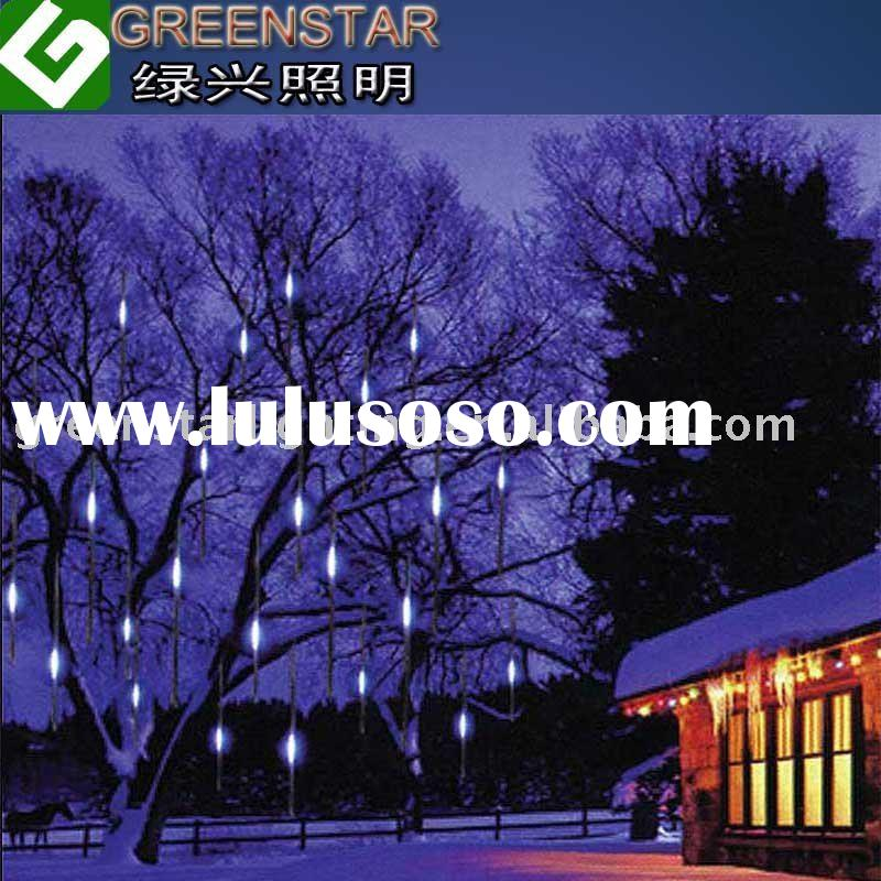 Holiday outdoor LED Light