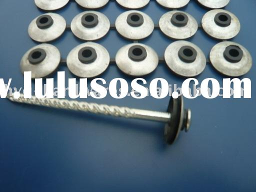 Roofing Nail & Washer