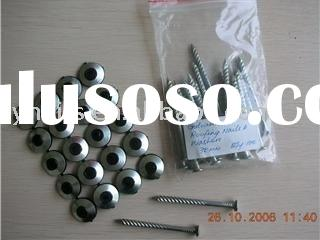 Roofing Screws with Washers