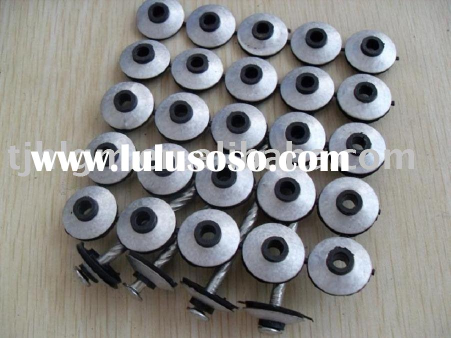 screw nails with washer