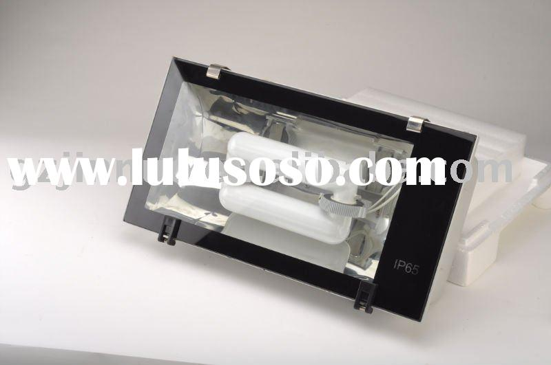 Electrodeless lamp/ induction lamp