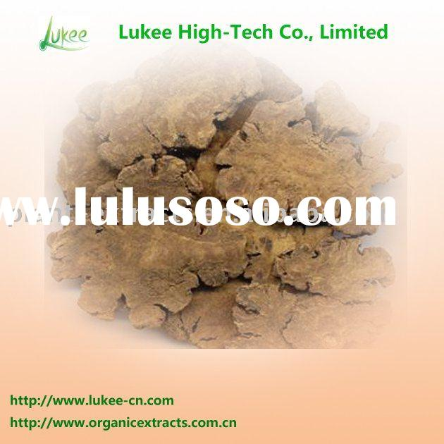 Medicinal plant lovage extract