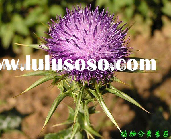 Natura  Milk Thistle Extract