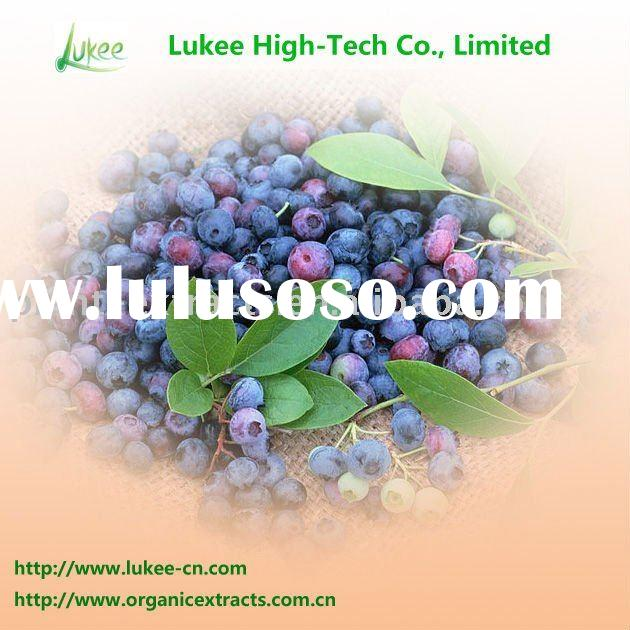 Natural medicinal plant bilberry extract anthocyanins 25% for anti-aging