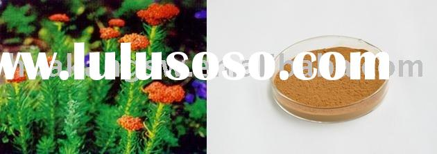 Rhodiola rosea extract 3%-HPLC(08)