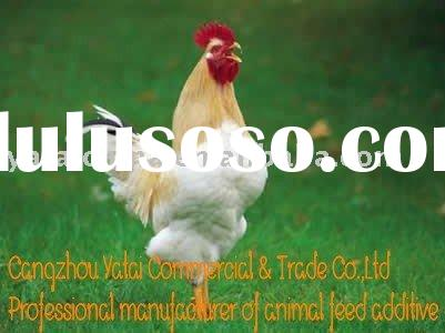 Poultry feed--with high protein level