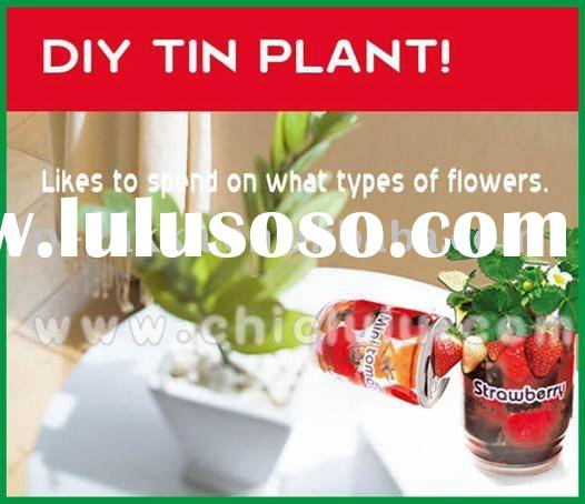 canned plant grow kit