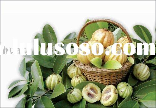 High quality natural Garcinia Cambogia P. E. 60% HCA