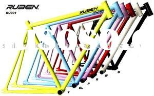 Bicycle Frame (RUBEN fixed gear)