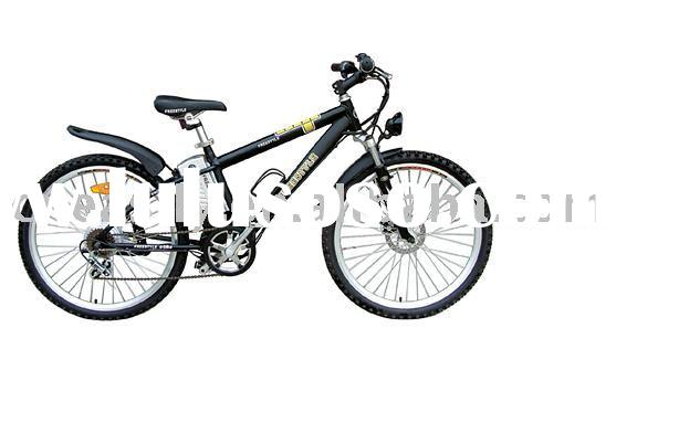 lithium-ion electric bicycle with pedaling assistant system(PAS)
