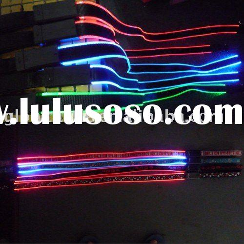 Super bright Double Row LED Flashing Dog Leash