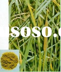 cattail pollen * PuHuang * Chinese Herb Medicine,herbs,herbal medicine,herb,herbal,herb medicine