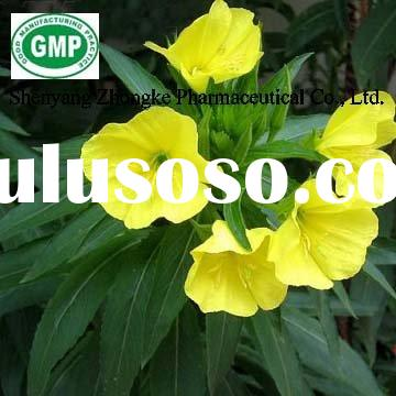 Softgel ingredient-Refined Evening primrose oil GMP factory direct