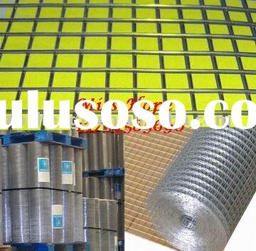 Galvanized Welded Wire Mesh (22years Factory)
