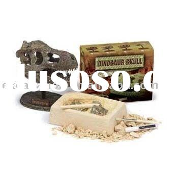 Dig and Discover Dinosaur skull, Excavation dinosaur dig it out kit
