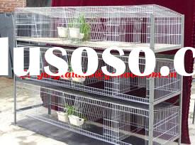 cage/chicken cage/pigeon cage/rabbit cage/fox cage/poultry cage