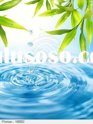 Bamboo Leaf Extract for cosmetics
