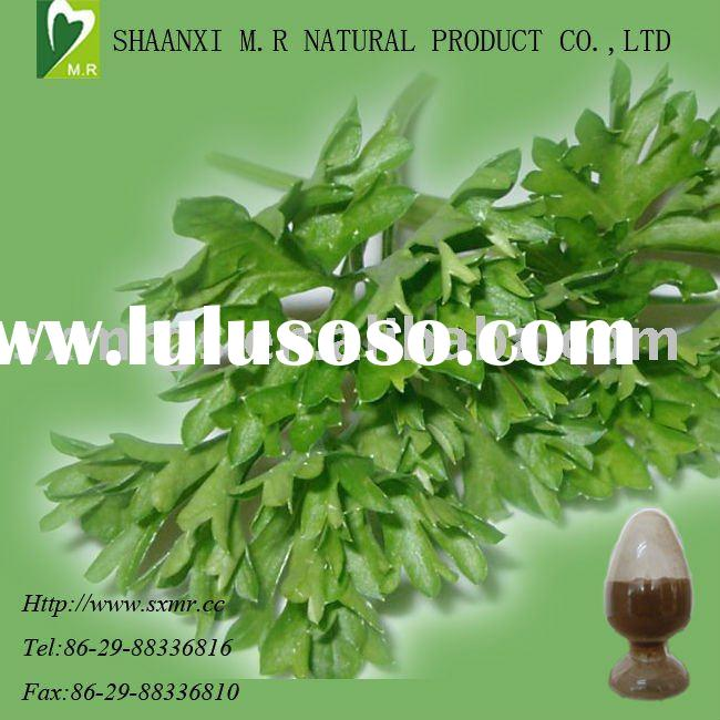 Parsely Extract-reduce blood pressure-High quality
