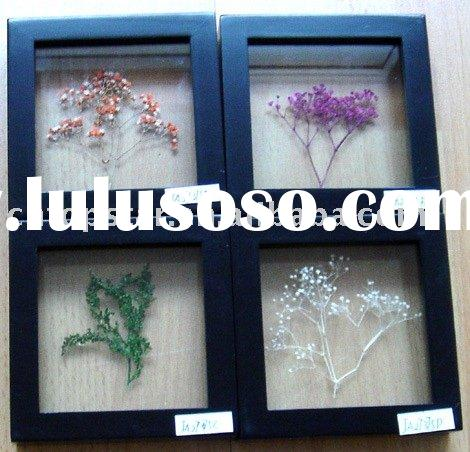 dry flower decorative frame/home decoration/wall decoration/decorative frame/wooden frame