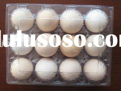 Clear and disposable plastic egg tray packing for 12
