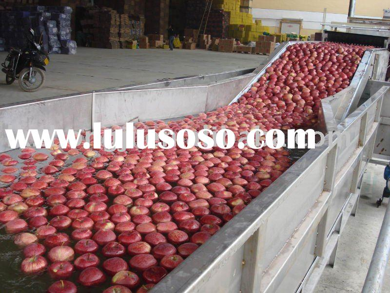 Fruit washer and dryer equipment