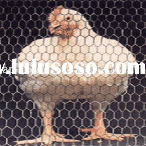 Lobster Trap Mesh (factory)