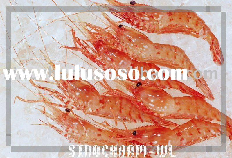 sell china high quality frozen shrimps