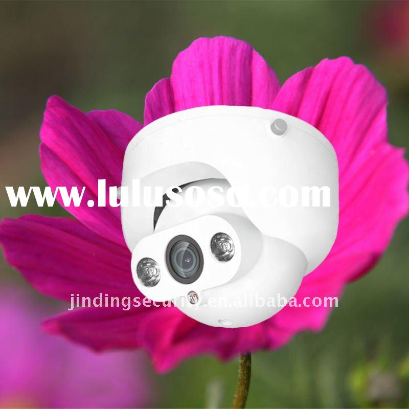 CCD Color Indoor Night and Day Array Camera