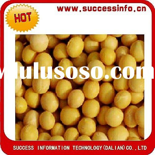 Chinese Yellow Soybeans