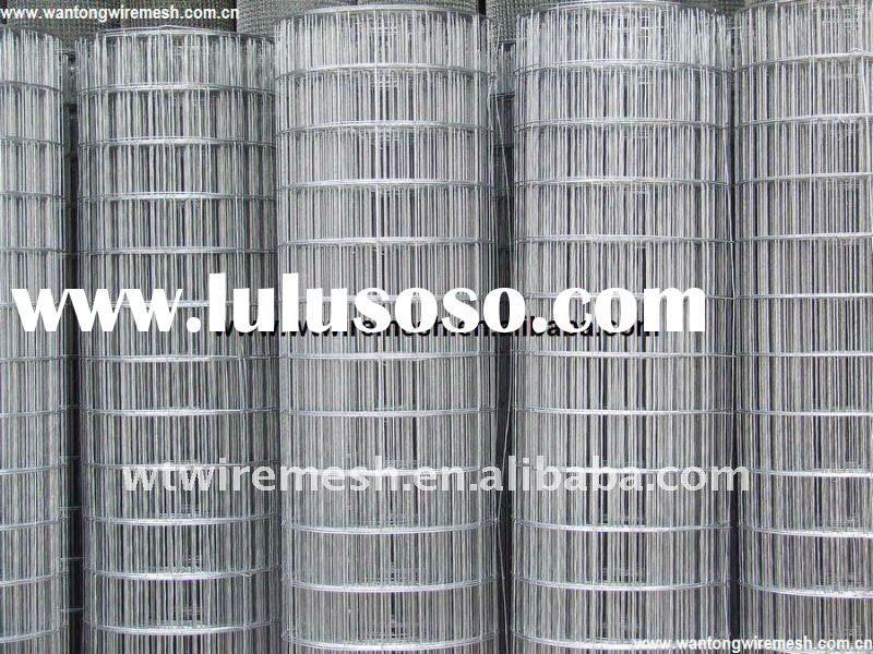 Galvanized welded wire mesh(factory )