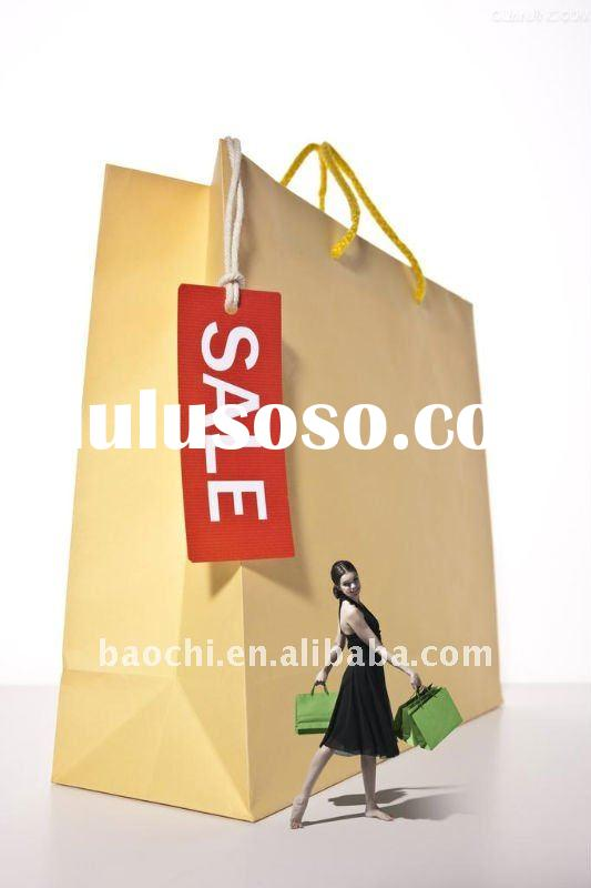 Fashional Shopping Paper Bag, Many Designs for Option