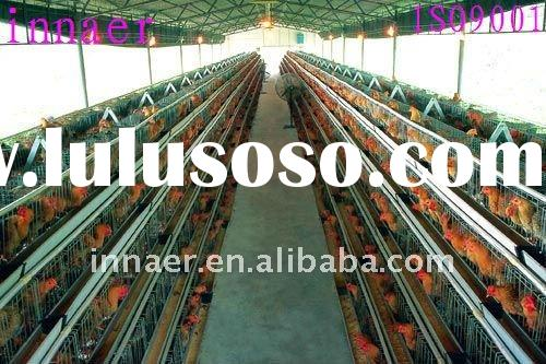 high quality  poultry chicken cage