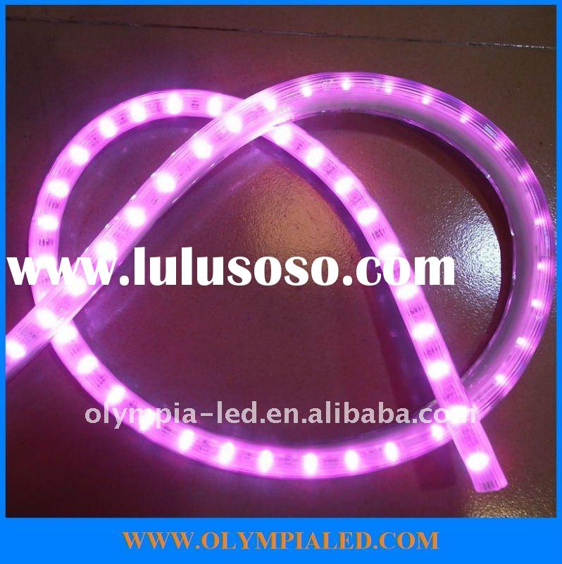 Digital LED Rope Light with high quality