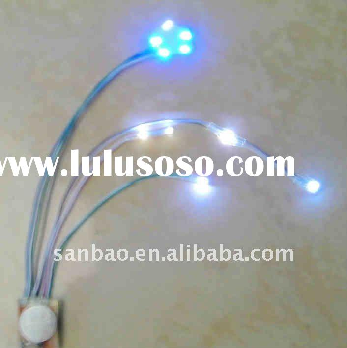 Module Shoes String Lights With led light