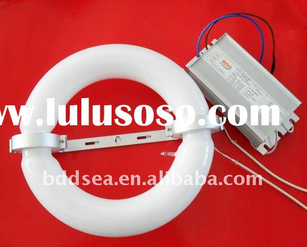 Induction lamp with ballast (CE/FCC/RoHs/CCC)