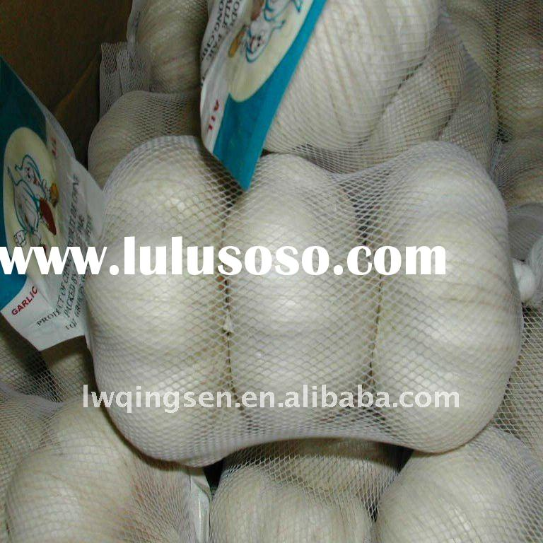 2011 china cheap fresh garlic