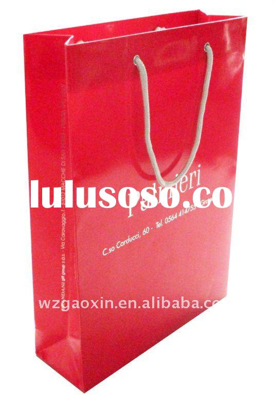 elegant fashion shopping paper bag
