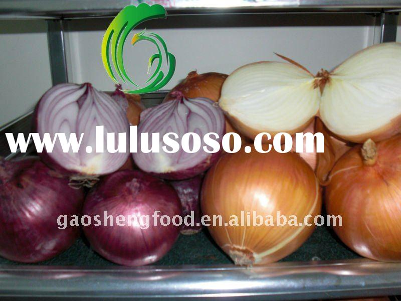 Fresh Yellow Red Onion size of 5-8cm 8cm up