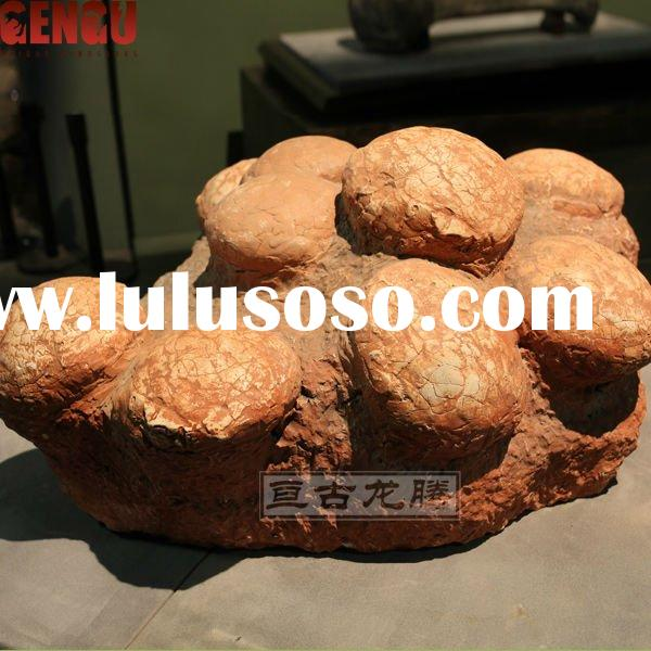 dating dinosaur eggs A nest of perfectly preserved dinosaur eggs have been discovered under a construction site in china up to 30 fossolised eggs were found by construction workers on christmas day in the city of ganzhou, which is known in china as the 'hometown of dinosaurs', according to chinese state media.